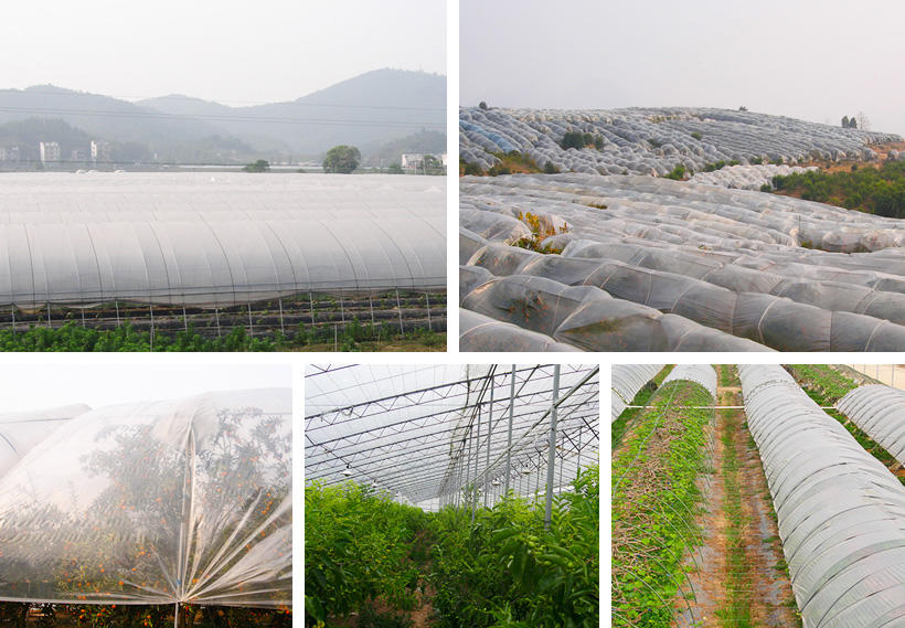 Synwin extrawide garden fabric directly sale for farm