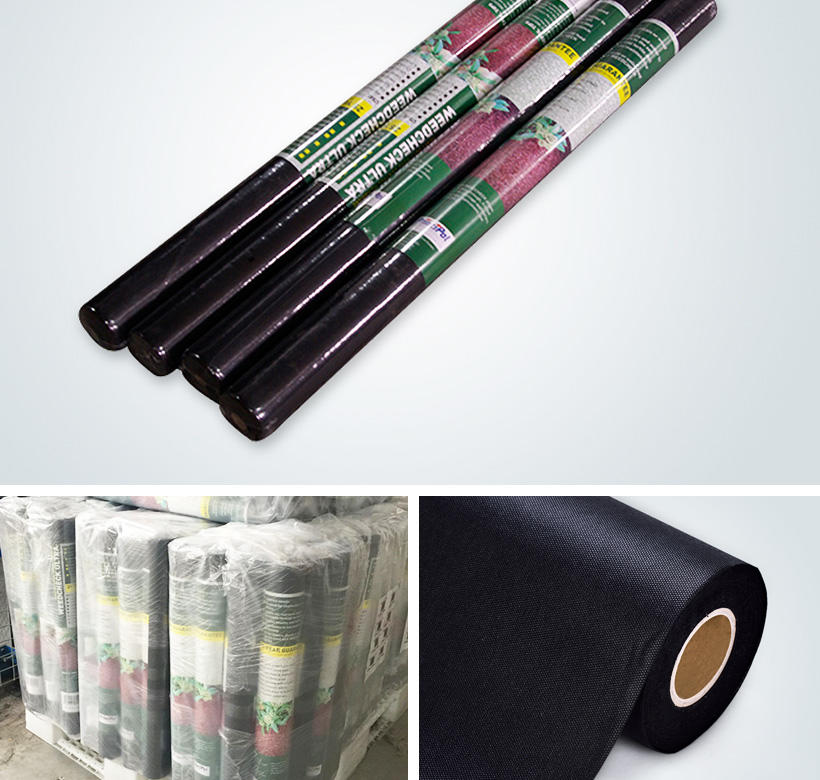 mat non woven fabric manufacturer in China from China for garden Synwin Non Wovens