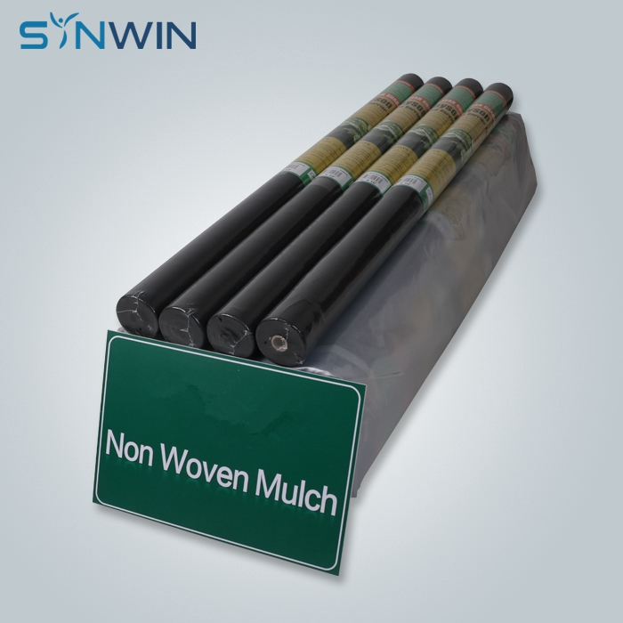 product-Synwin-img