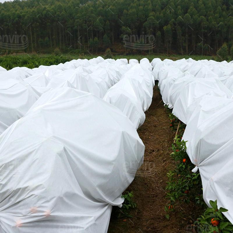 Premium Winter Plants Garden Frost Protection Fleece 17gsm