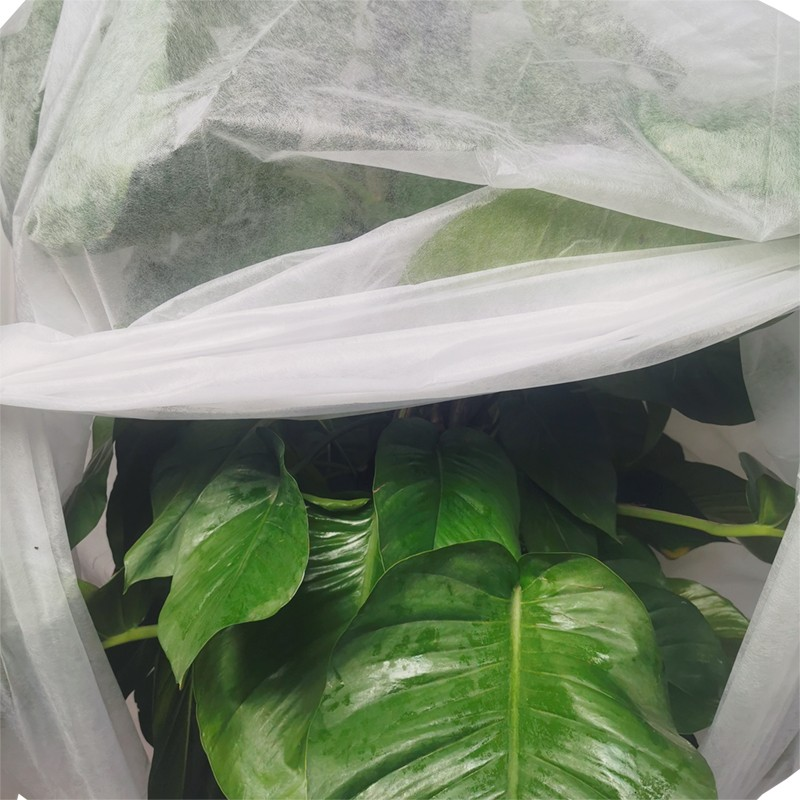 product-Eco-friendly agriculture plant cover biodegradable PP non woven tree cover-Synwin-img