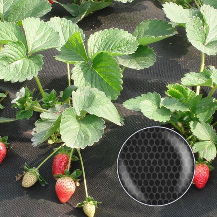 NEW DESIGN ! Dot design non woven fabric weed control mat for garden