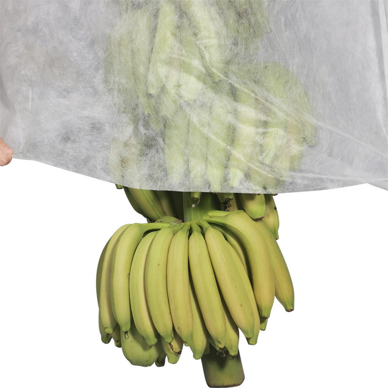 Eco friendly Agriculture plant cover pp nonwoven banana bag 1%~4% uv resistence Agricultural Nonwoven Fabric
