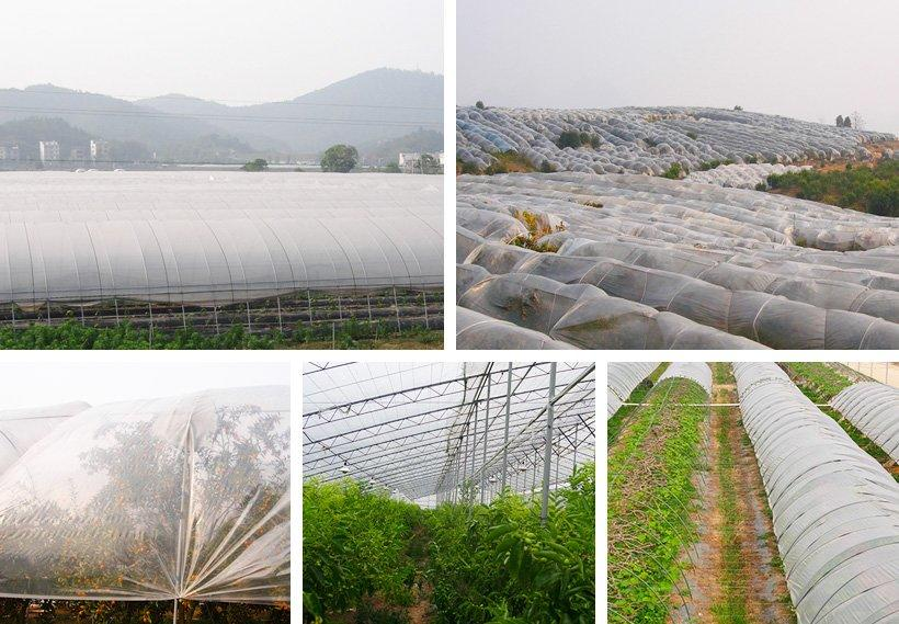 Synwin non woven vegetable garden weed control manufacturer for farm