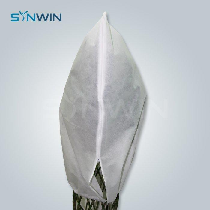 Plant Cover  - SW-AG002