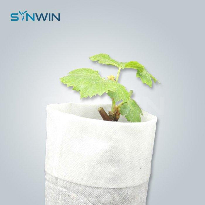 Plant Cover  - SW-AG003