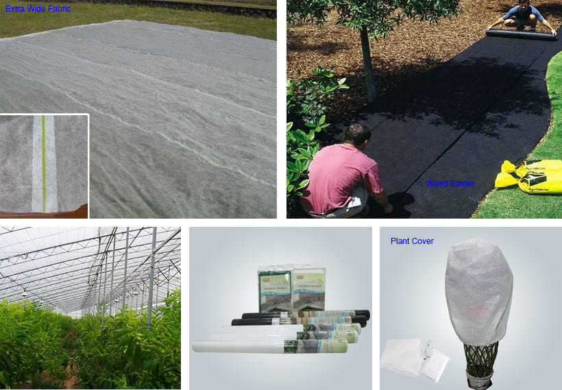 creative vegetable garden weed control from China for outdoor