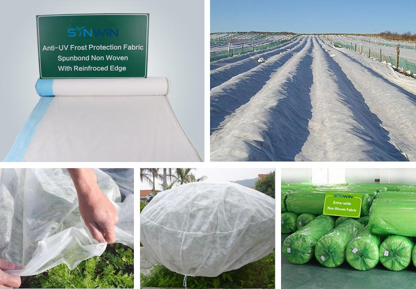 film vegetable garden weed control from China for garden