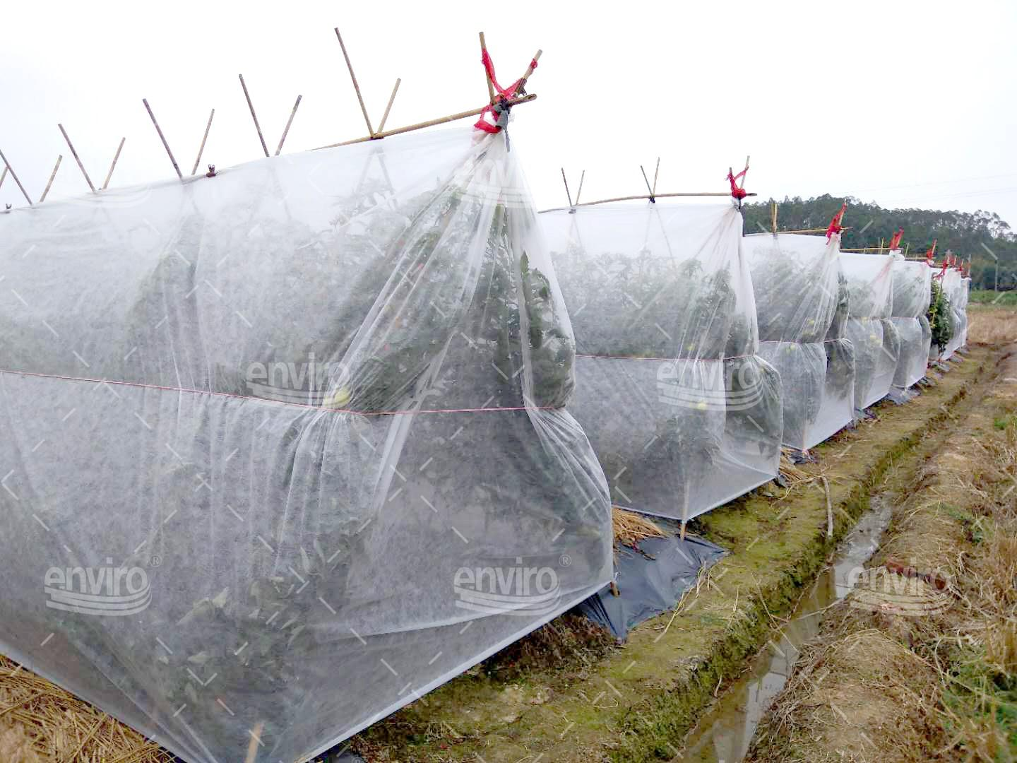 stable frost protection fleece winter factory for tablecloth