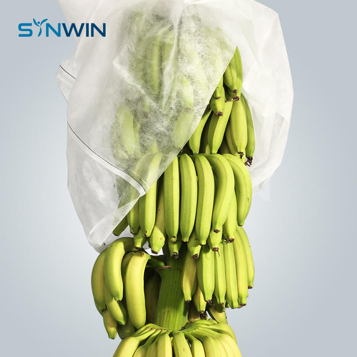 Banana Plant Cover Agriculture Products Pp Spunbond Nonwoven Fabric