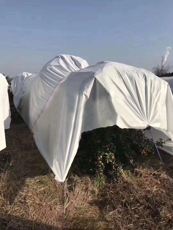 weed-proof cloth