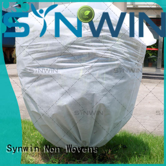Synwin Non Wovens film non woven fabric manufacturing plant cost supplier for tablecloth